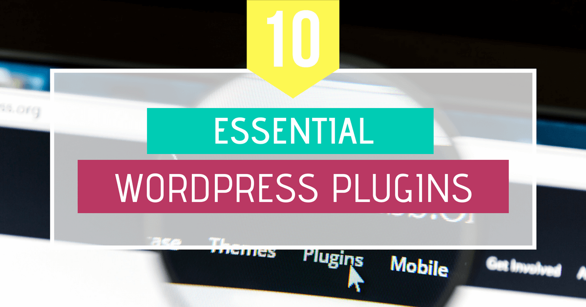 essential WordPress plugins for beginners
