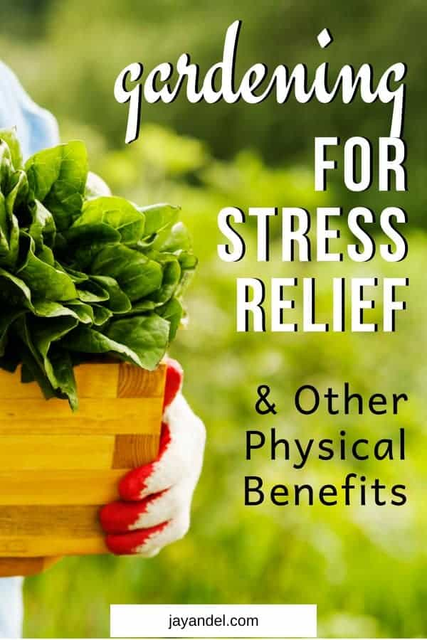Find out why you should try gardening for stress relief! Besides the obvious benefits of mental restoration, gardening that can also bring restored health and vigor to your body.