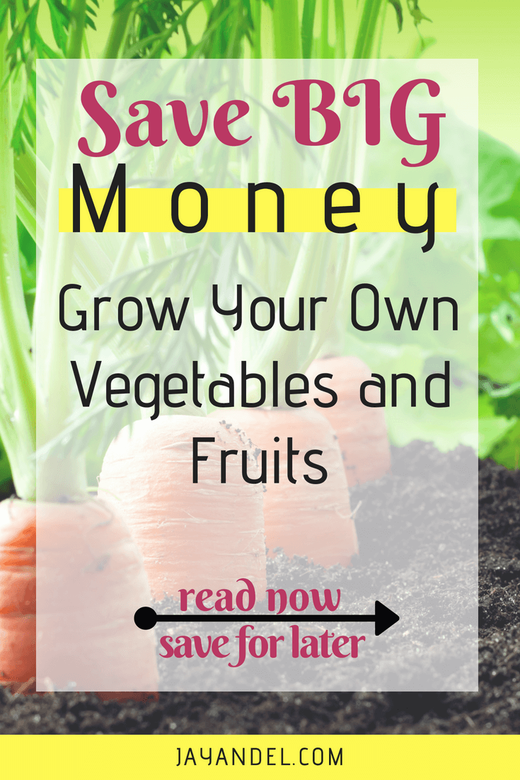 How much money could you save by growing your own fruit & vegetables to feed your family? Growing your own food can be a tasty way to cut costs on your monthly grocery bill.