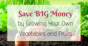 save money by growing your own vegetables and fuits