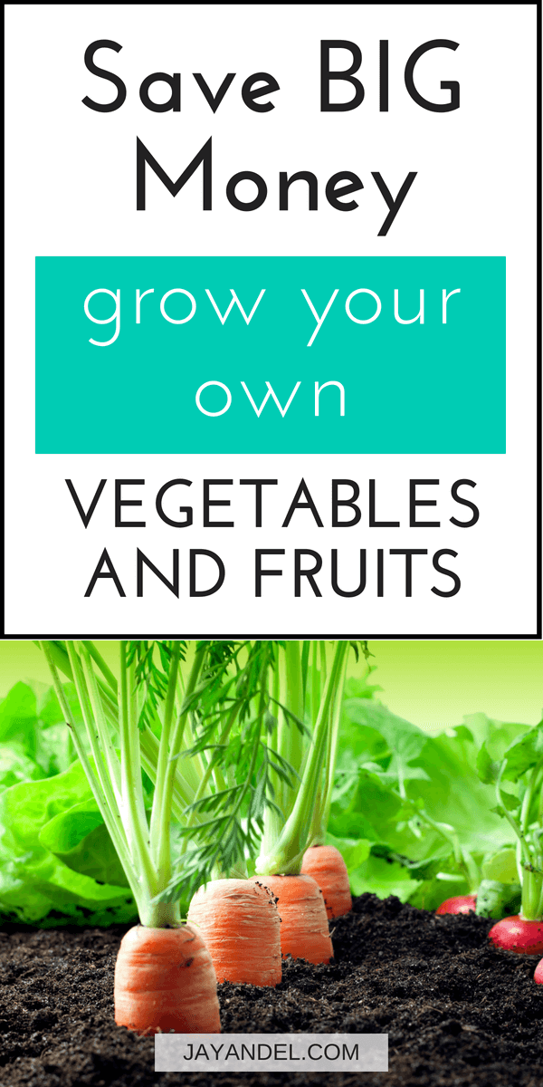 save money grow your own