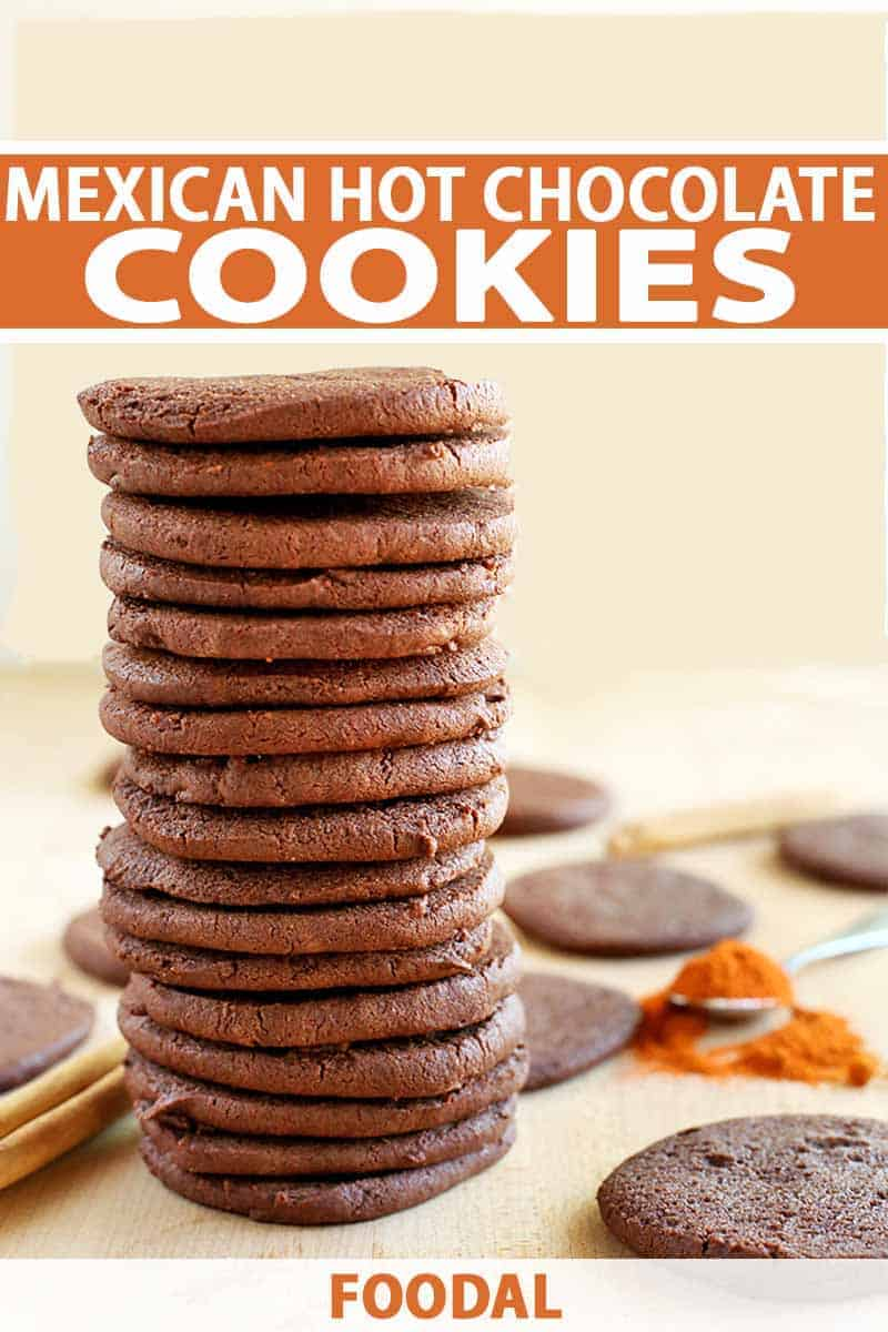 Mexican-Hot-Chocolate-Cookie