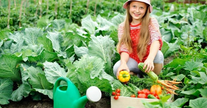 10 Great Reasons to Start a Family Vegetable Garden This Year