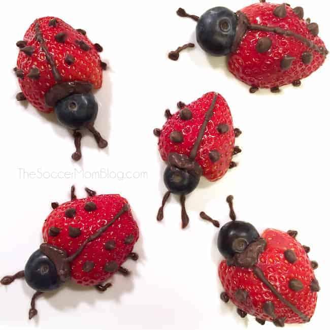 Strawberry Ladybugs by The Soccor Mom Blog