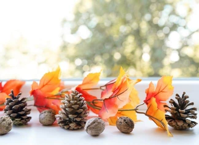 Easy Ways to Make Your Home Smell Like Fall