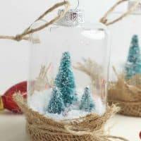 Rustic Snow Globe Ornaments