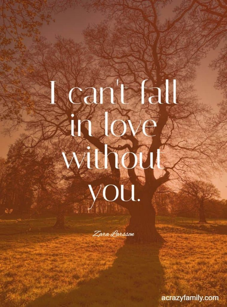 I can't fall in love without you by Zara Larsson song lyrics