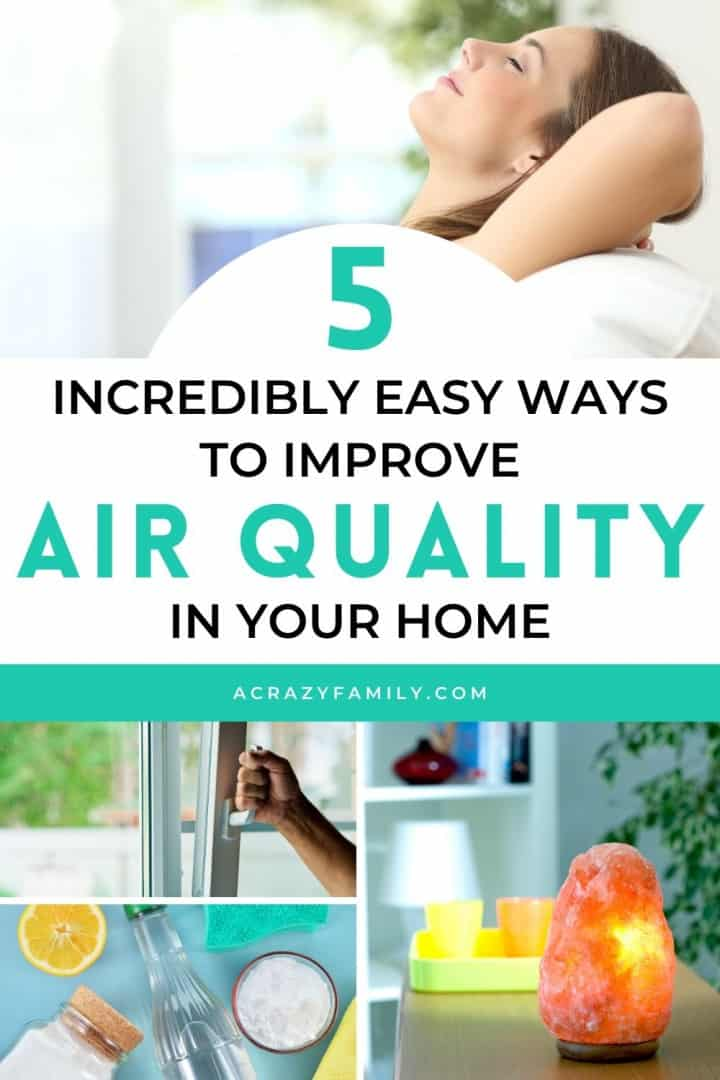 5 Incredibly Easy Ways to Improve the Air Quality in Your Home