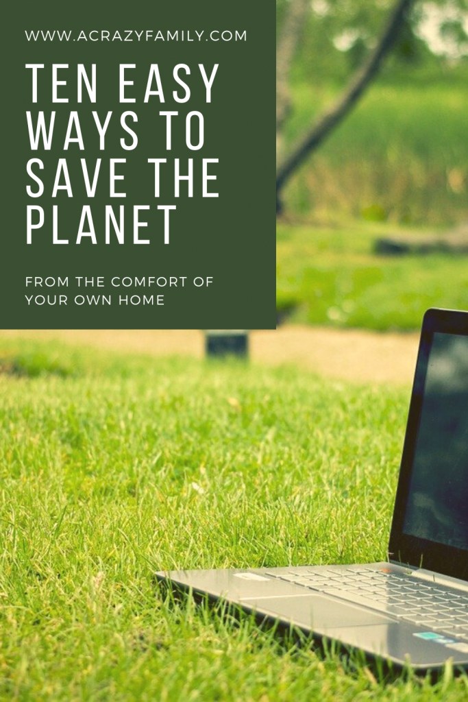 Pinterest image for 10 Easy Ways To Save The Environment At Home