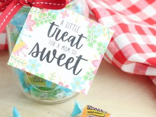 Sweet Treat Mothers Day Gift Idea (Free Printable Gift Tags)